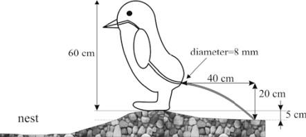 pingvin akcióban